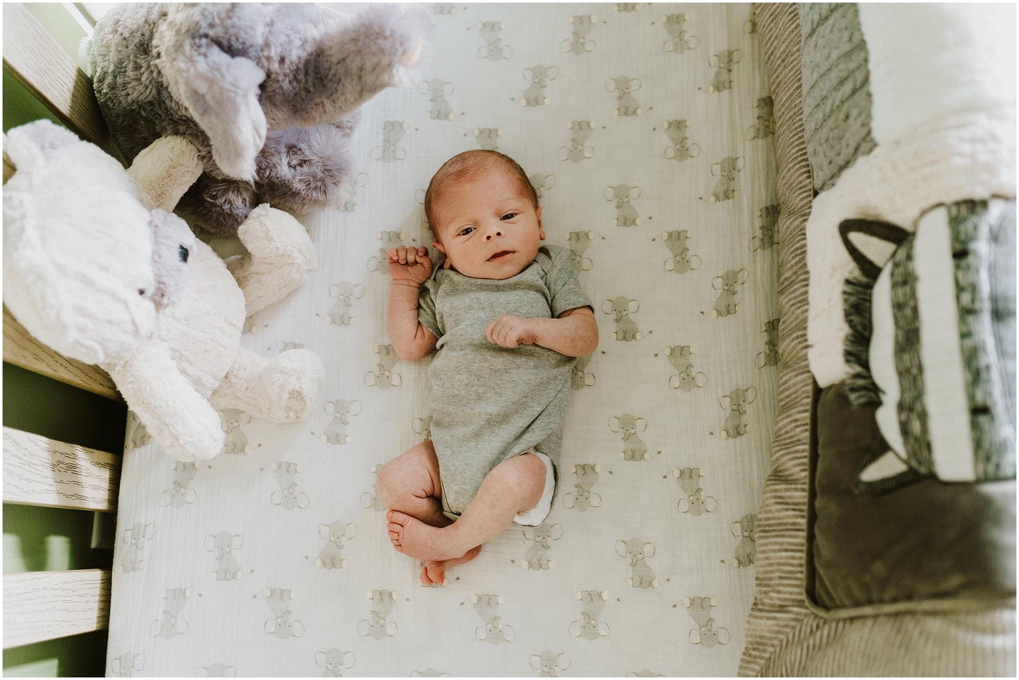 Troy Newborn Photographer_0014.jpg